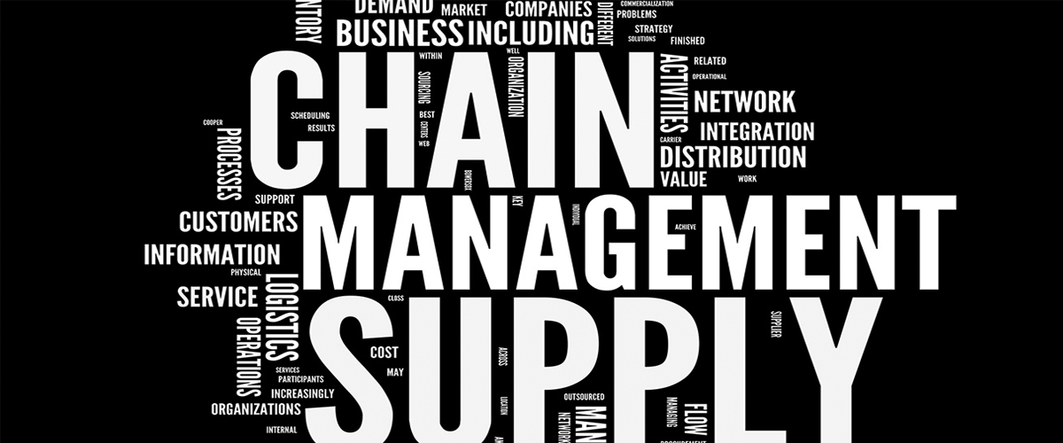 An accountant discovers the field of supply chain management